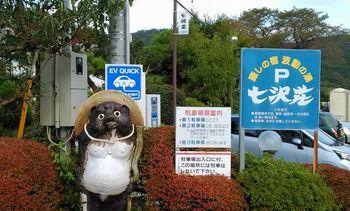 七沢荘・狸.jpg